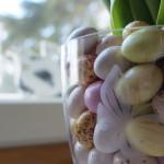 Tulppaaneja ja suklaamunia